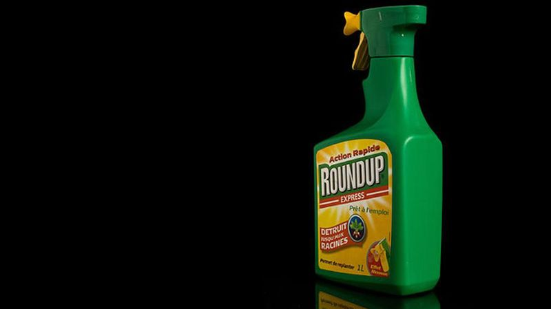 Herbicides: Coop et Migros bannissent les désherbants à base de glyphosate