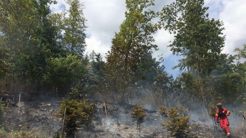 Alors que l'interdiction générale d'allumer un feu persiste dans le Haut-Valais, la situation devient critique pour la rive droite du Valais romand.